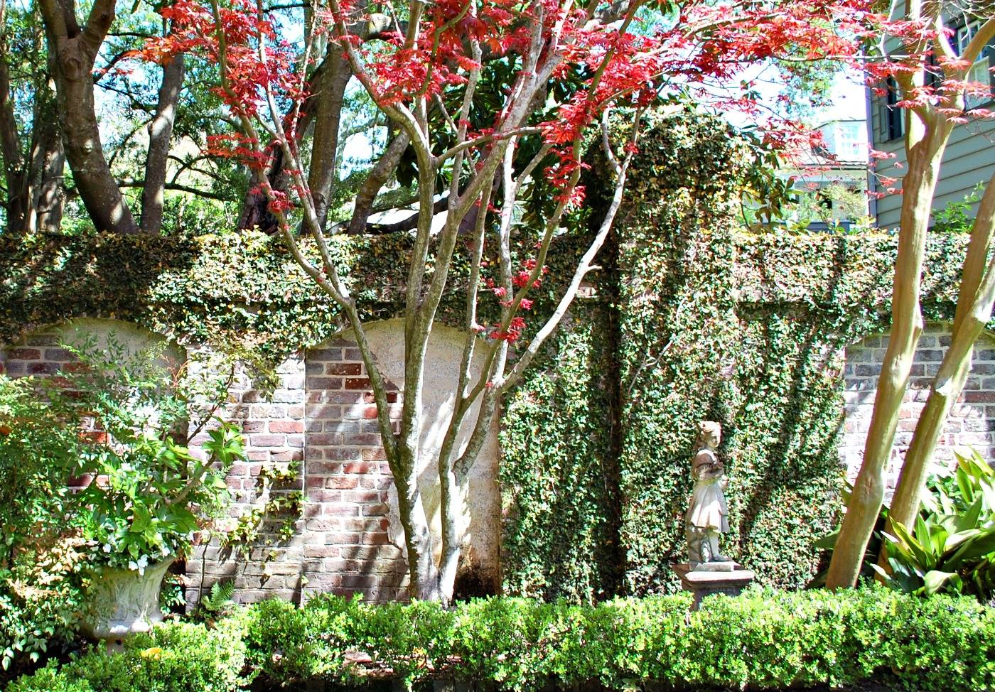 The Foliage And Flora Of Charleston Gardens Historic Charleston Events
